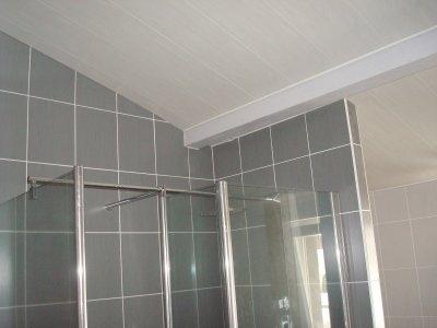 plafond de salle de bain. excellent finest humidit faux plafond ... - Plafond Salle De Bain Pvc