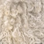 isolation laine de mouton isolation id es. Black Bedroom Furniture Sets. Home Design Ideas
