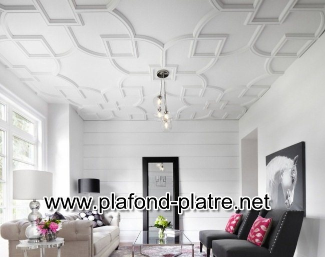Faux plafond blanc isolation id es for Faux plafond blanc