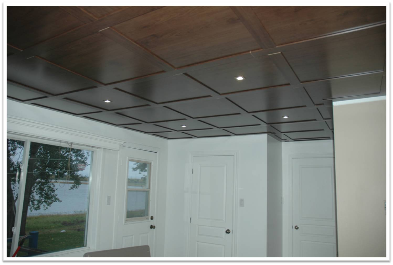 Plafond suspendu couleur isolation id es - Isolation phonique plafond suspendu ...