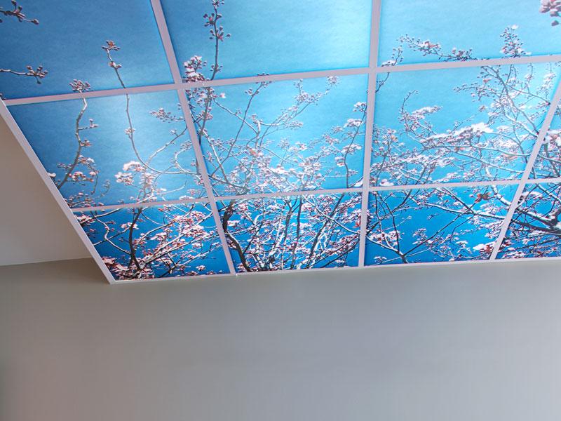 Plafonds suspendus dalles isolation id es - Plafonds suspendus dalles decoratives ...