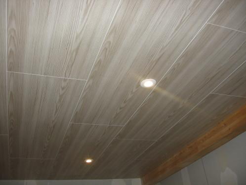 lames pour plafond isolation id es. Black Bedroom Furniture Sets. Home Design Ideas
